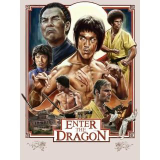 enter-the-dragon-movie-film-metal-sign