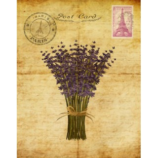 garden-lavender-post-card-metal-tin-sign