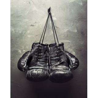 Boxing & Gym Memorabilia metal tin signs